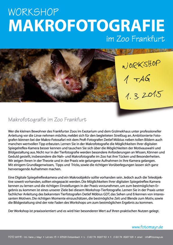 Workshop Makrofotografie im ZOO Ffm