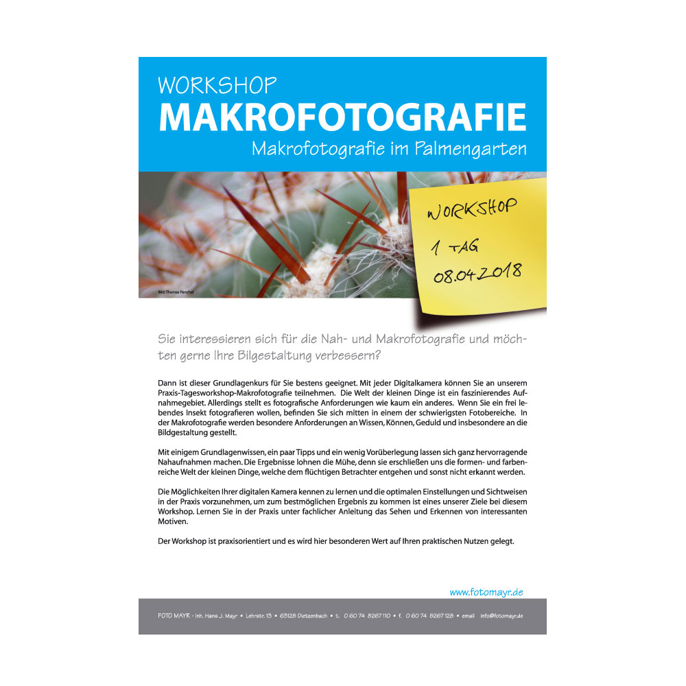 Workshop Makrofotografie Palmengarten
